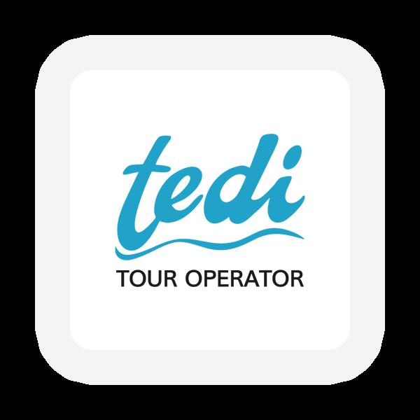 Logo Tedi Tour Operator - Maingage, Web agency Bari